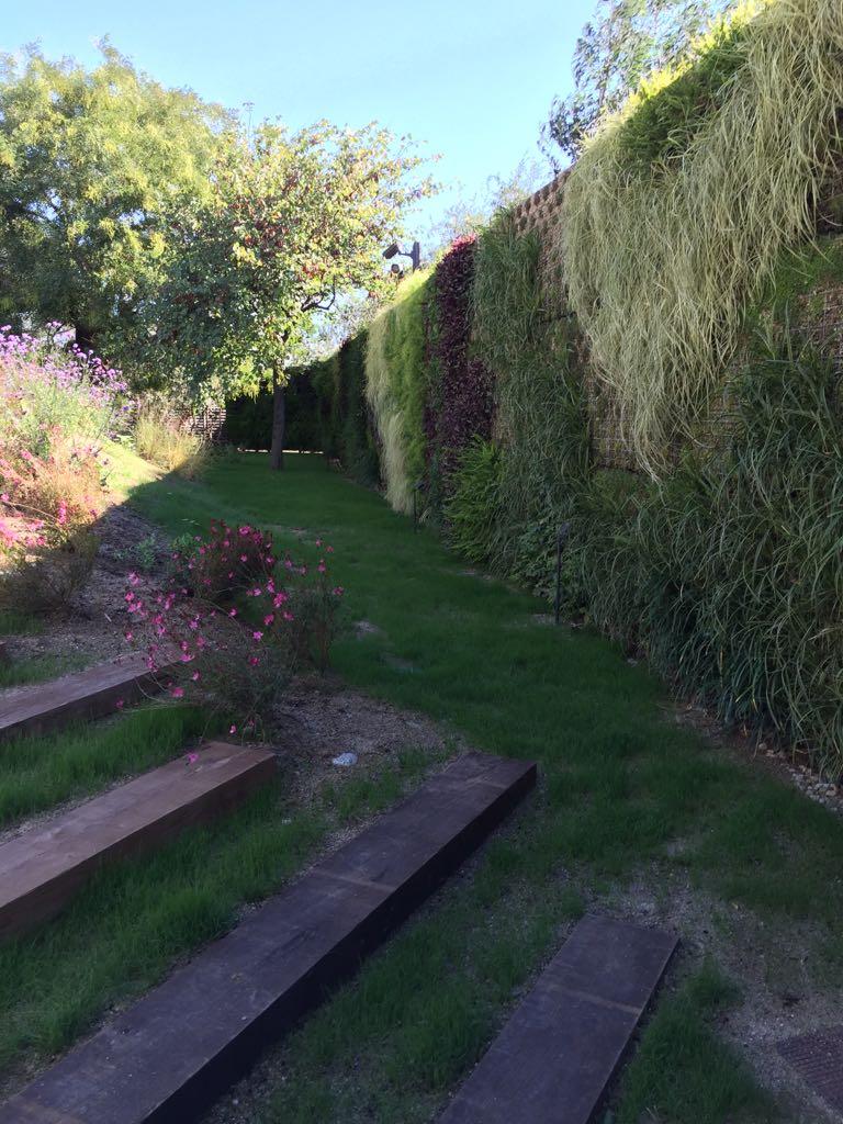 jardines verticales barcelona t max restaura i
