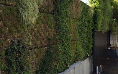 Jardines Verticales, Instalación en Chalet Privado Alto Standing