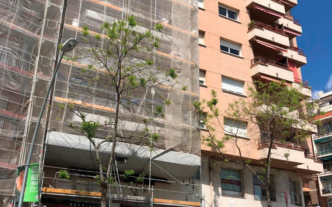 Repicado de Frontis en Balcones